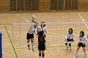 results-of-volleyball02